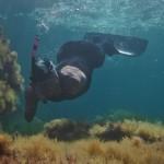 Thierry Corbalan tenta il giro della Corsica a nuoto