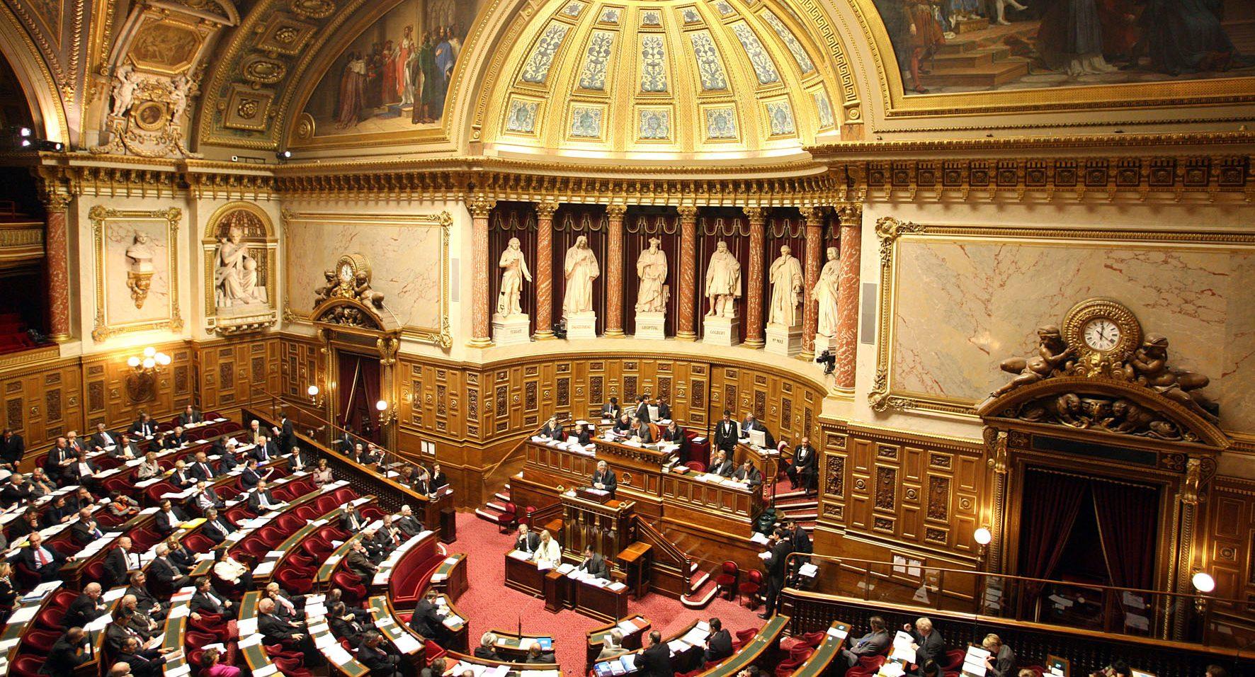 Il senato boccia tre disposizioni relative alla nascita for Sito senato